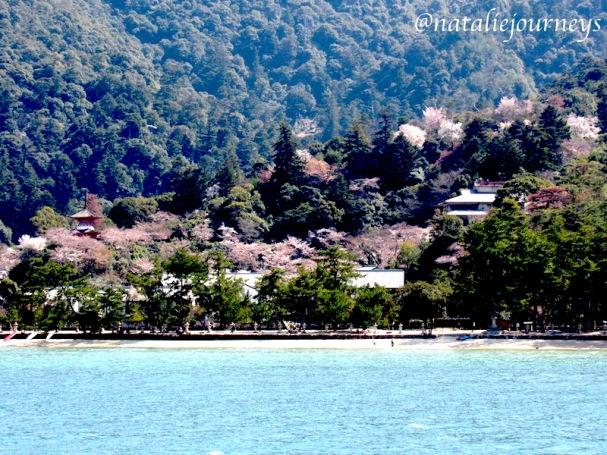 Itsukushima5