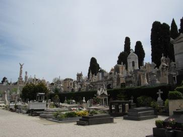 Cemetery8